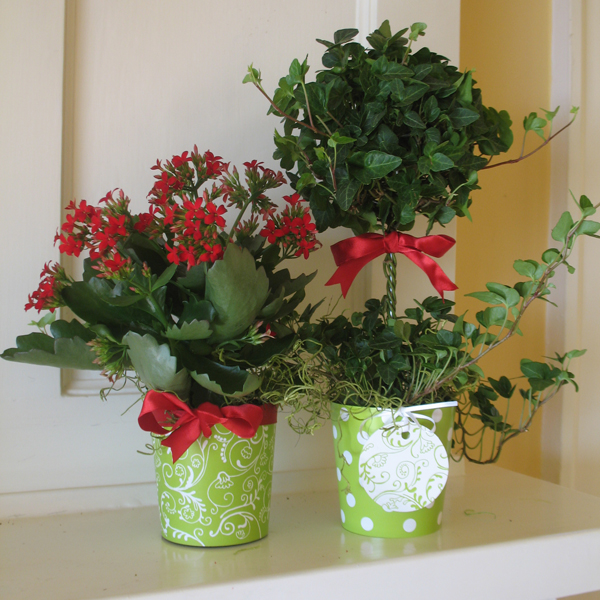 CathysWraps Blog Archive How To Make Easy Centerpieces Hostess Gifts And Party Favors For The