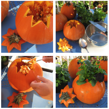 Pumpkin Blog entry This sweet little Fall Centerpiece was super easy and